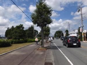湯田小公園付近(県道37号)