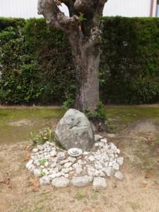 県道37号 湯田3交差点から美和ロック方向へ、最初のT字路付近の山神