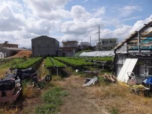 新川原橋〜松倉橋(汁谷川)付近