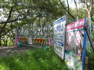 堤防強化工事中の宮川堤(桜堤)