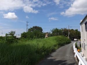 堤防強化工事中の宮川堤(桜堤)から桜の渡し説明板へ