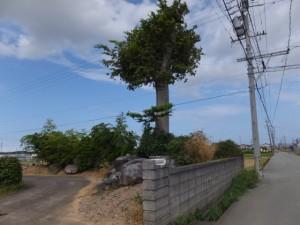 宮川の堤防道路から近鉄山田線方向へ、途中で左折