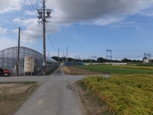 農道を右折で高向大社(御薗町高向)へ