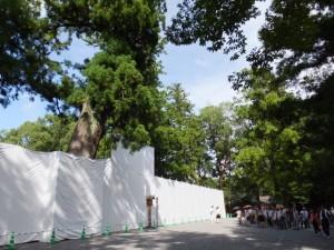 御正宮旧宮の前面に張られた工事用のシート(外宮)