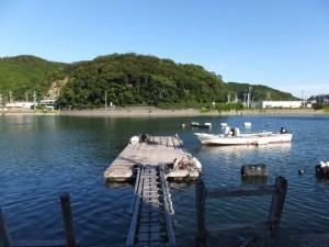 加茂川越しに望む赤崎神社の社叢