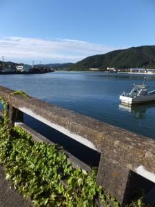 安楽島橋から望む加茂川の上流側