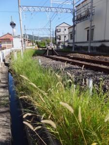 近鉄 志摩磯部駅〜踏切道 上之郷 第五号
