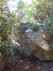 青峰山(天跡山)山頂にある岩