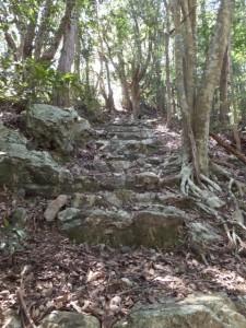 燈明石への山道(青峯山正福寺の近く)