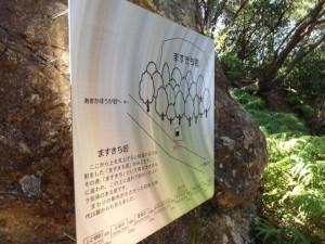 ますきち岩の説明板 - 青峰道(松尾道)