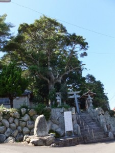 船津八幡神社(鳥羽市船津町)