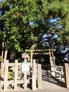 御食神社(辰の宮)
