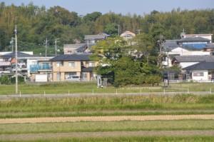 五十鈴川左岸堤防から遠望する加努弥神社