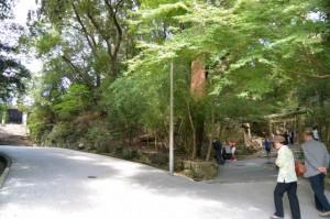 左側が神宮司庁、右側が大山祗神社、子安神社