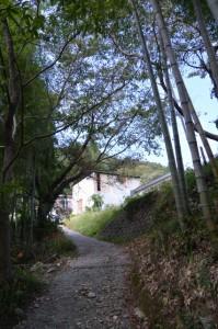 多岐原神社付近