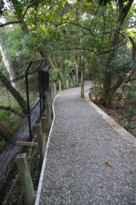 上御井神社の遥拝場所への小道(2012年10月)