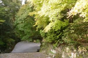 神宮司庁の階段を下り大山祗神社、子安神社へ