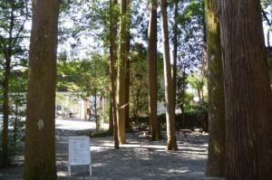 熊野本宮大社参道脇のオープンカフェ