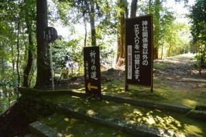 祈りの道(熊野本宮大社)