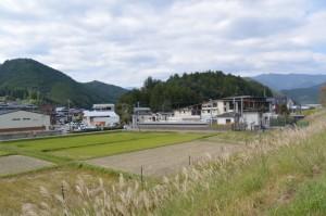 熊野川の堤防道路から眺める世界遺産熊野本宮館付近