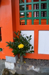 神倉神社の社殿