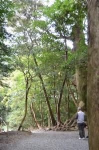 後退した上御井神社の遥拝場所(外宮 大津神社付近)