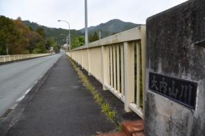 滝原大橋(大内山川)