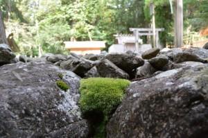 長由介神社(川島神社を同座)付近