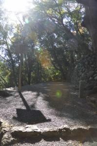 大水神社(川相神社、熊淵神社を同座)付近