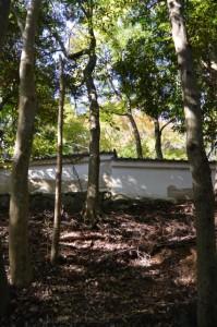 大水神社(川相神社、熊淵神社を同座)前から望む旧林崎文庫の土塀