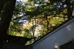 旧林崎文庫の脇門付近から望む