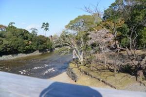 宇治橋から望む五十鈴川下流側(内宮)