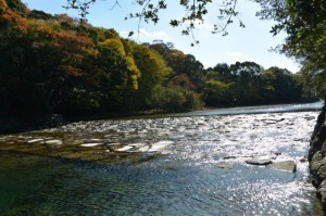 五十鈴川(宇治橋の下流側)