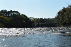 五十鈴川から望む宇治橋