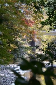 御手洗場への階段から望む唐子川(頭之宮四方神社)