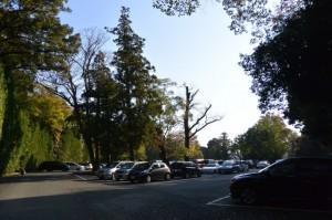 外宮駐車場の西側