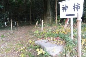 積田神社の神柿付近(名張市夏見)