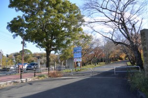 倭姫宮参道の道標付近