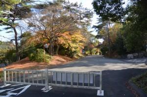 紅葉(神宮徴古館駐車場付近)