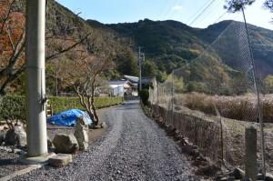 仙宮神社付近(南伊勢町河内)