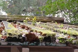 緑豊かな御厩の屋根(外宮)