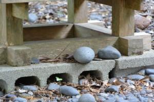 仙宮神社、本殿脇の祠に置かれた丸い石(南伊勢町河内)