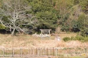 天王さん、逢鹿瀬寺跡の遠望(多気町相鹿瀬)