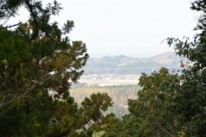 的山公園のコンクリート舗装路からの眺め
