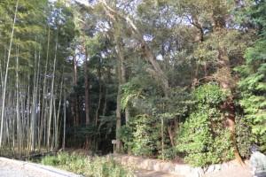 田乃家神社(皇大神宮摂社)