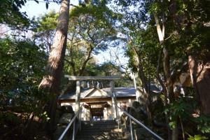 高茶屋神社、伊勢-4(3390)