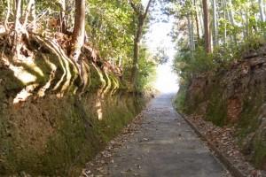 伊賀町公会堂〜伊勢-5(8790)の途中から須賀神社へ