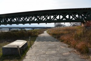 宮川桜の渡し跡(左岸)付近