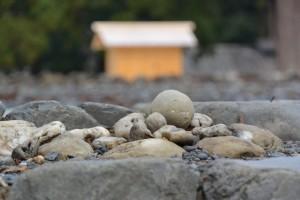 お気に入りの丸い石(外宮 正宮の古殿地)