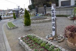 宮崎お花畑
